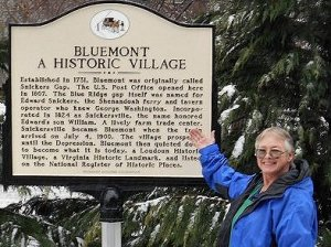 New Bluemont Historical Marker